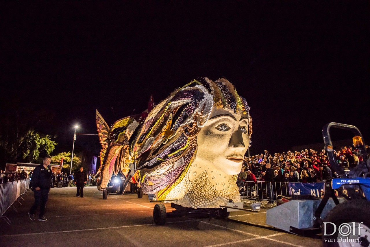 * FRUITCORSO TIEL, CORSO BY NIGHT *    Een prachtige parade van fruit en licht!!!!